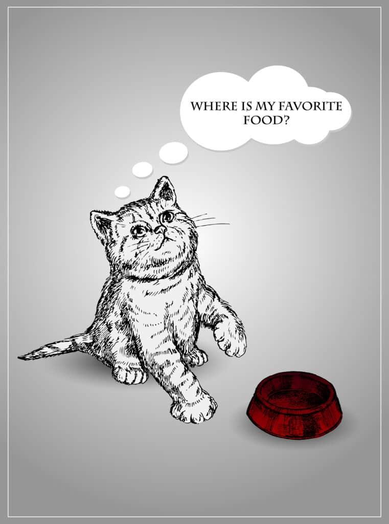 merrick cat- ood